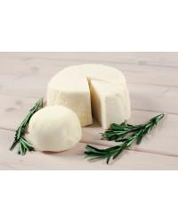 Адыгейский сыр (панир) домашний классический