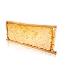 Мёд в сотах (рамка)